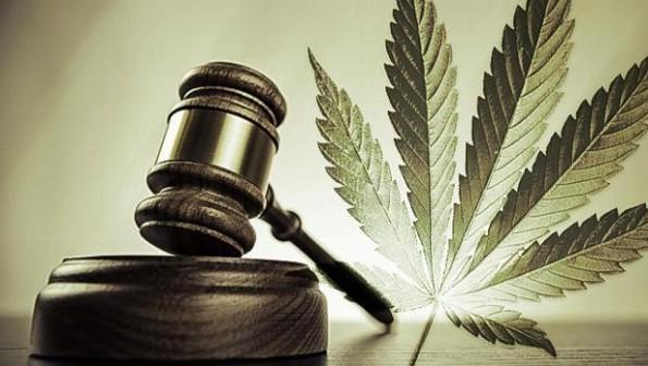 ¡Sorpresa! ¡Senado aprueba el uso medicinal de la marihuana en México!