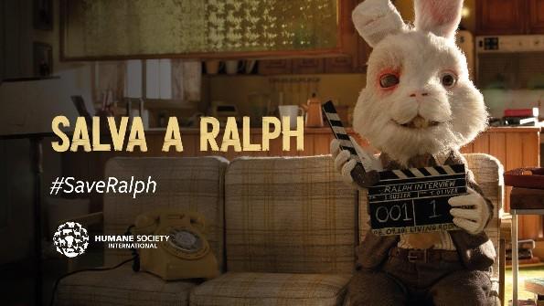 Salven a Ralph; la campaña que busca detener el maltrato de animales en laboratorios